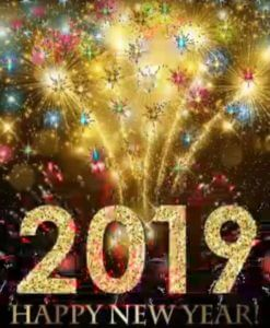 2019_fireworks_happy new year
